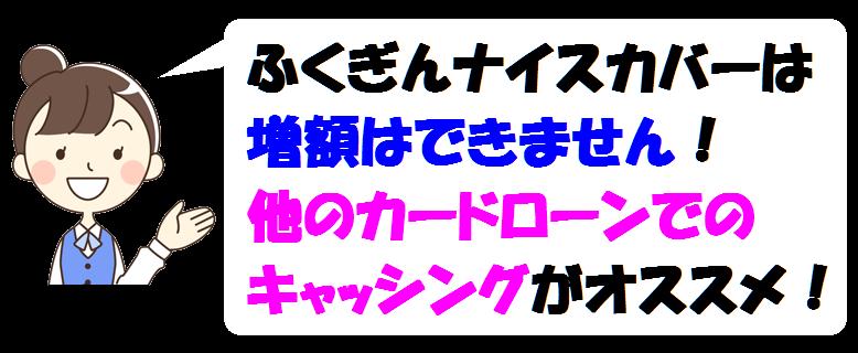 ふくぎんナイスカバー・増額
