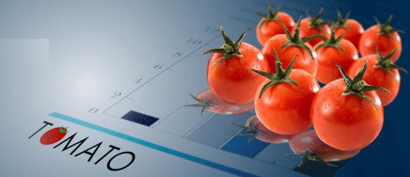 トマト銀行・事業者向けローン
