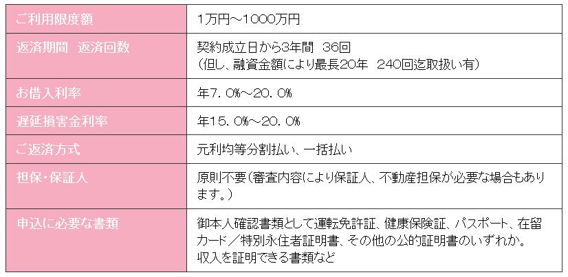 az株式会社のローン詳細